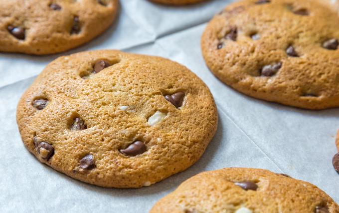 עוגית שוקולד צ'יפס