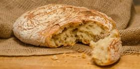 לחם פרא